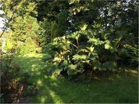 Hope Cottage - Devon - 976094 - thumbnail photo 28