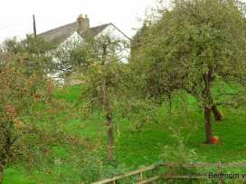 Wassail Cottage - Devon - 976131 - thumbnail photo 14