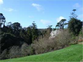 Lamellen House - Cornwall - 976362 - thumbnail photo 35