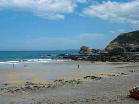 Sea Thrift - Cornwall - 976392 - thumbnail photo 21