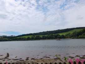 The Boat House - Cornwall - 976403 - thumbnail photo 3