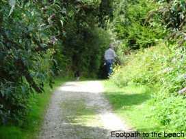 Herons Reach - Cornwall - 976453 - thumbnail photo 14