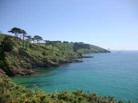 Blue Seas - Cornwall - 976468 - thumbnail photo 22