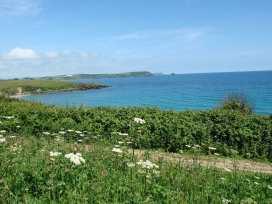 Blue Seas - Cornwall - 976468 - thumbnail photo 24