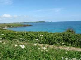 Pelyn Creek Cottage - Cornwall - 976500 - thumbnail photo 15