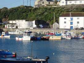 Evergreen - Cornwall - 976519 - thumbnail photo 41