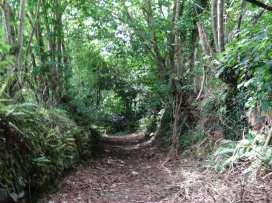Swift Cottage - Cornwall - 976530 - thumbnail photo 21