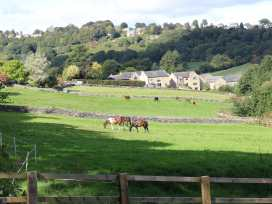 Morgan's Barn - Yorkshire Dales - 976582 - thumbnail photo 32