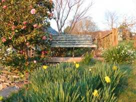 Clamoak Cottage - Devon - 977305 - thumbnail photo 22