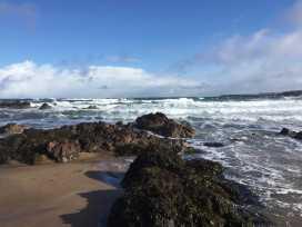 Sea Spray - Scottish Lowlands - 977789 - thumbnail photo 16