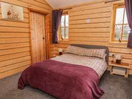 Caban Hare - Mid Wales - 981008 - thumbnail photo 11