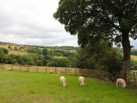 Shepherds Cabin at Titterstone - Shropshire - 981606 - thumbnail photo 19