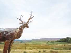 Moscar Lodge - Peak District - 982527 - thumbnail photo 57