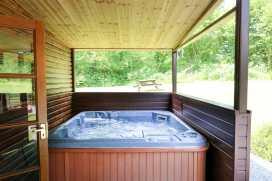 Brook Lodge - Mid Wales - 983486 - thumbnail photo 9