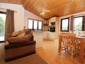 Willow Lodge - Cornwall - 983741 - thumbnail photo 8