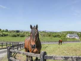 The Cottage - Westport & County Mayo - 984077 - thumbnail photo 26