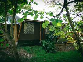 Stellar Safari Lodge - Mid Wales - 984103 - thumbnail photo 39