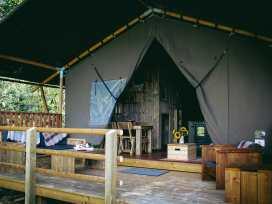 Stellar Safari Lodge - Mid Wales - 984103 - thumbnail photo 36