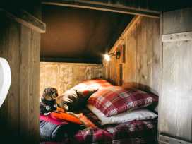 Stellar Safari Lodge - Mid Wales - 984103 - thumbnail photo 22