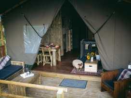 Stellar Safari Lodge - Mid Wales - 984103 - thumbnail photo 35