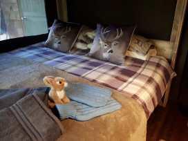 Stellar Safari Lodge - Mid Wales - 984103 - thumbnail photo 26