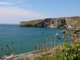 Gull Rock - Cornwall - 984748 - thumbnail photo 18