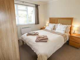 Moyo - Isle of Wight & Hampshire - 985158 - thumbnail photo 7