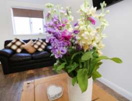 15A Grove Cottage - South Wales - 985583 - thumbnail photo 3