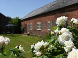 The Barn House - Shropshire - 985606 - thumbnail photo 2