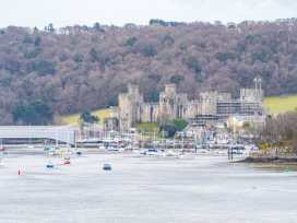 33 Deganwy Castle - North Wales - 985611 - thumbnail photo 19