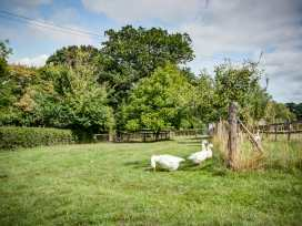 Little Barn - Cotswolds - 988611 - thumbnail photo 28