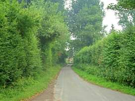 Tagmoor Hollow - Cotswolds - 988661 - thumbnail photo 9