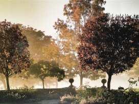 Walnut Barn - Cotswolds - 988735 - thumbnail photo 28