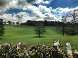 Chestnut Barn - Cotswolds - 988769 - thumbnail photo 19
