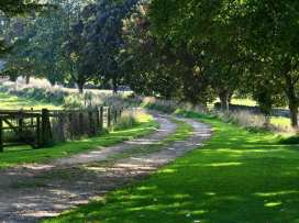 The Courtyard, Notgrove - Cotswolds - 988780 - thumbnail photo 40