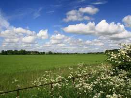 Cleeveley Cottage - Cotswolds - 988786 - thumbnail photo 15
