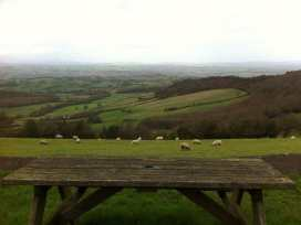 Llangain Farmhouse - Herefordshire - 988859 - thumbnail photo 16