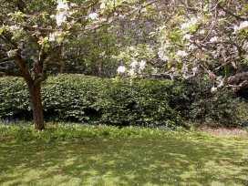 Gun Hill Cottage - Kent & Sussex - 988889 - thumbnail photo 5