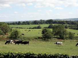 Cow Byre - Somerset & Wiltshire - 988925 - thumbnail photo 14