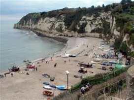 Gull's Rest - Devon - 988981 - thumbnail photo 27