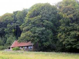 Fisherman's Lodge - Somerset & Wiltshire - 988983 - thumbnail photo 5