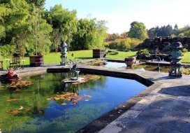 King John's House - Somerset & Wiltshire - 990580 - thumbnail photo 49