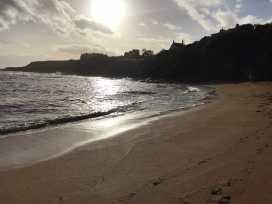 Sandpipers - Scottish Lowlands - 990743 - thumbnail photo 18