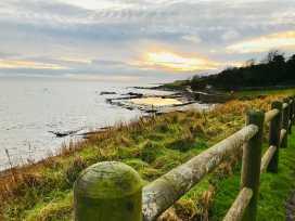 Sandpipers - Scottish Lowlands - 990743 - thumbnail photo 19