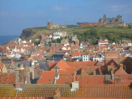 Hawthorn - Whitby & North Yorkshire - 991049 - thumbnail photo 20