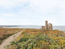 Windy Haven - Cornwall - 992675 - thumbnail photo 14