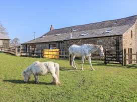 Stable View Cottage - Yorkshire Dales - 993312 - thumbnail photo 19
