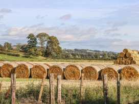 Bonjedward Mill Farm Cottage - Scottish Lowlands - 993485 - thumbnail photo 21