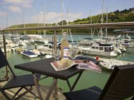 15 Dart Marina - Devon - 994815 - thumbnail photo 1