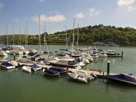15 Dart Marina - Devon - 994815 - thumbnail photo 15